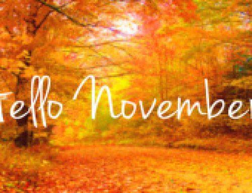 Nové novembrové jazykové kurzy